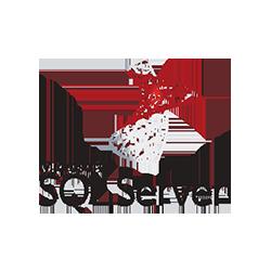 SQL szerver